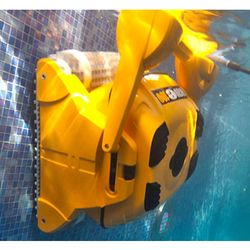 Dolphin Wave 100 Automatic Pool Cleaner