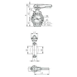 Georg Fischer GF Type 567 Butterfly Valve 80mm