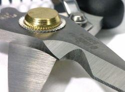 Stainless Cutting Scissors